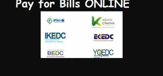 PHCN-NEPA Prepaid Metre Bill: Pay Online Now in Easy Steps