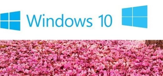 Easy Steps to Stop Windows 10 Spring Creators Update on PC