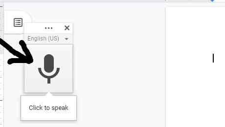 Voice Type